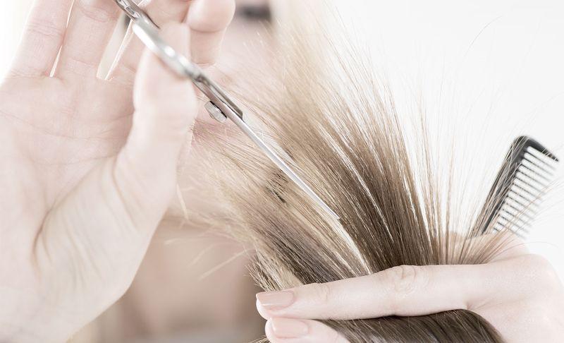 Где и что нужно для обучения на семинаре (тренинге) парикмахеров
