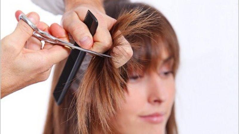 Где находится лучший техникум парикмахеров
